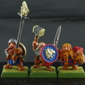 dwarf warriors-0021